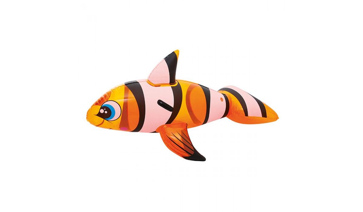 Ban Apung Ikan Badut